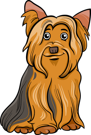 Cartoon Illustration of Cute Yorkshire Terrier Dog or York