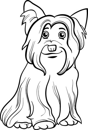 yorkshire: Black and White Cartoon Illustration of Cute Yorkshire Terrier Dog or York for Coloring Book Illustration