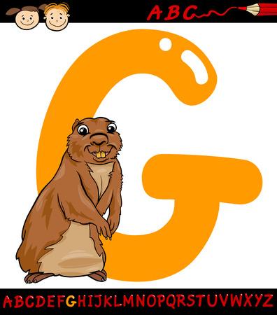 gopher: Cartoon Illustration of Capital Letter G from Alphabet with Gopher Animal for Children Education Illustration