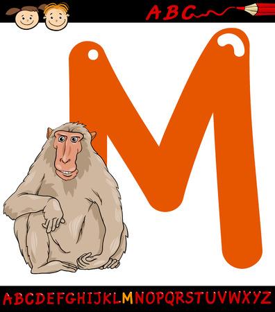 children education: Ejemplo de la historieta de May�scula M del alfabeto con Macaco Animal para la Educaci�n Infantil Vectores