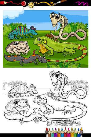 Coloring Book or Page Cartoon Illustration of Black and White Funny Reptiles and Amphibians Group for Children Vector