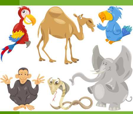 Cartoon Illustration of Funny Wild Animals Set Vector