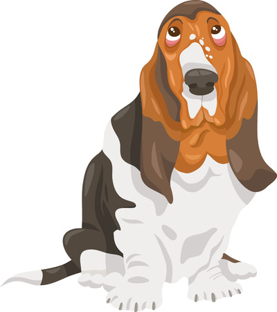 piebald: Cartoon Illustration of Cute Basset Hound Purebred Dog