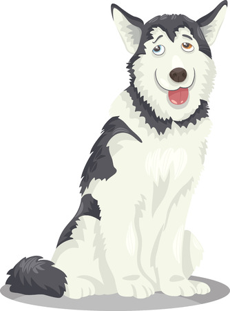 alaskan malamute: Cartoon Illustration of Funny Siberian Husky or Alaskan Malamute Purebred Dog