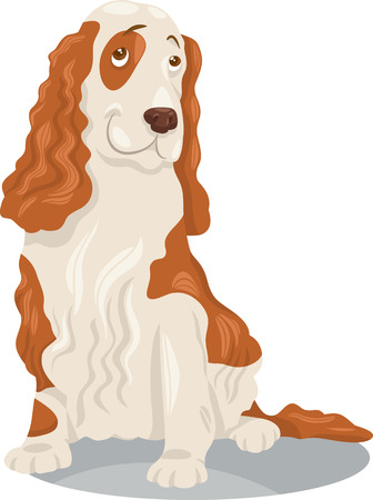 piebald: Cartoon Illustration of Funny Cocker Spaniel Purebred Dog