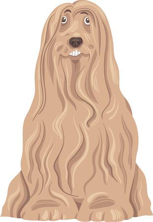 collie: Cartoon Illustration of Funny Bearded Collie Purebred Dog Illustration