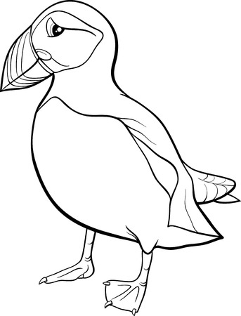 Black and White Cartoon Illustration of Atlantic Puffin Bird for Coloring Book