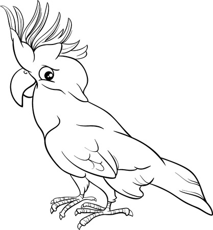 cockatoo: Black and White Cartoon Illustration of Cockatoo Parrot Bird for Coloring Book