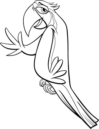guacamaya caricatura: Historieta blanco y negro Ilustración de Guacamayo Loro Pájaro para Coloring Book