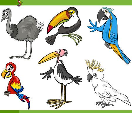 exotic birds: Cartoon Illustration of Funny Exotic Birds Set