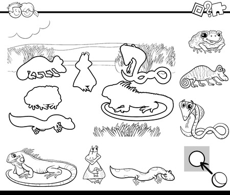 reptile: Black and White Cartoon Illustration of Educational Activity for Preschool Children with Reptile and Amphibian Animal Characters for Coloring Book