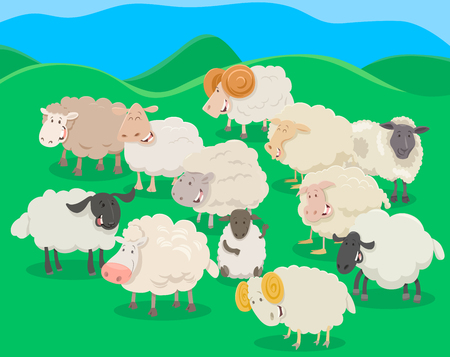 flocks: Cartoon Illustration of Flock of Sheep Farm Animal Characters.