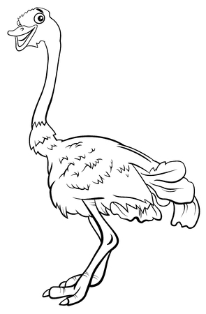 Black and White Cartoon Illustration of Funny Ostrich Bird Animal Character Coloring Book