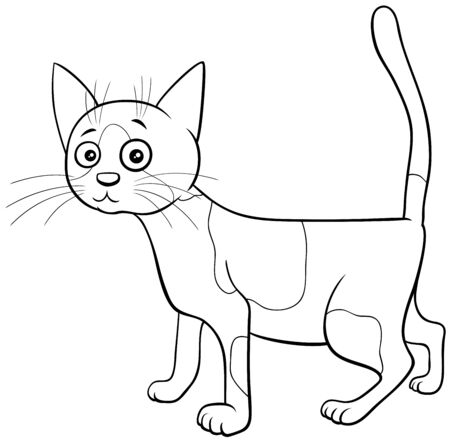 Black and White Cartoon Illustration of Spotted Cat or Kitten Comic Animal Character Coloring Book Page