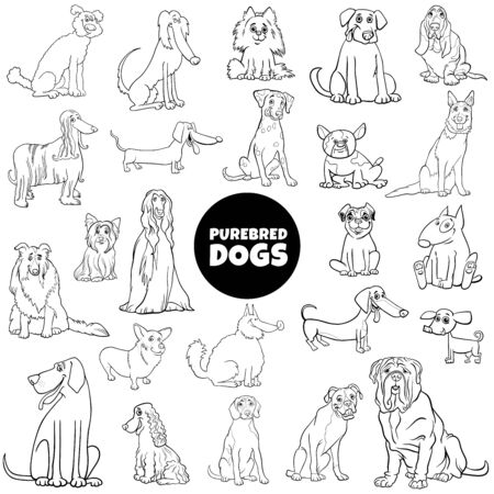 Black and White Cartoon Illustration of Purebred Dogs Animal Characters Large Set Coloring Book Page Vettoriali