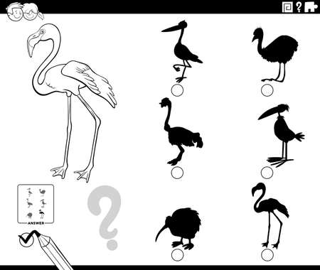 Black and White Cartoon Illustration of Finding the Right Shadow to the Picture Educational Game for Children with Flamingo Bird Animal Character Coloring Book Page 일러스트