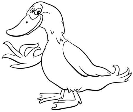 Black and White Cartoon Illustration of Duck Farm Bird Animal Character Coloring Book Page