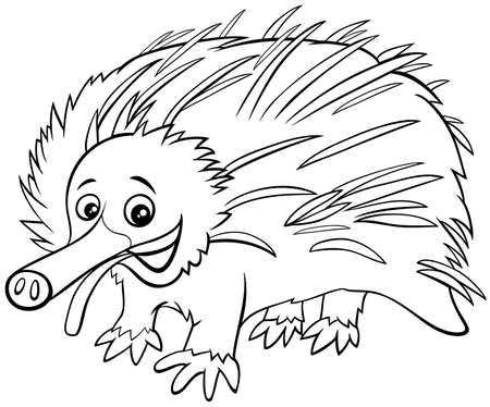 Black and White Cartoon Illustration of Echidna Wild Animal Character Coloring Book Page