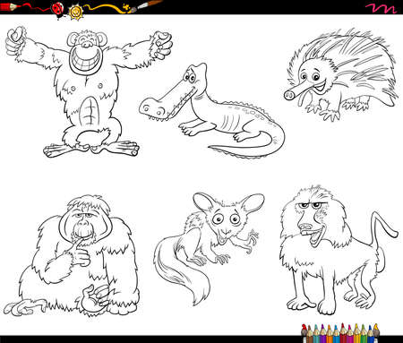 Black and White Cartoon Illustration of Birds Species Animal Characters Set Coloring Book Page 矢量图像