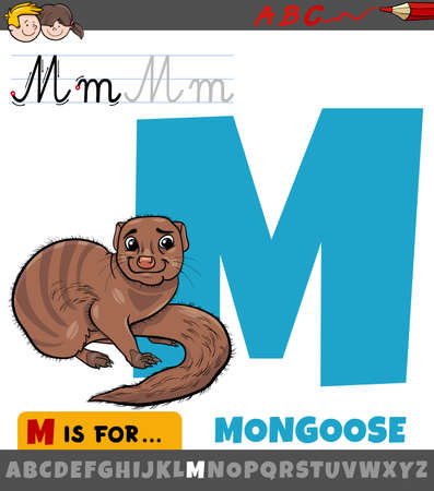 Educational cartoon illustration of letter M from alphabet with mongoose for children