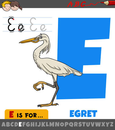 Educational cartoon illustration of letter E from alphabet with egret bird animal character
