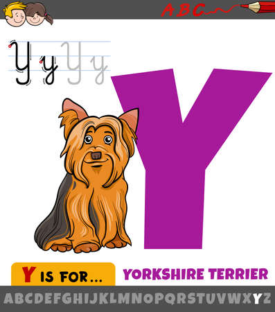 Educational cartoon illustration of letter Y from alphabet with Yorkshire Terrier dog animal character