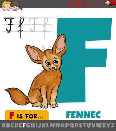 Educational cartoon illustration of letter F from alphabet with fennec animal character