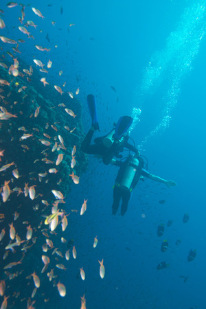 handicapped disabled leg less scuba diver on the reef background photo
