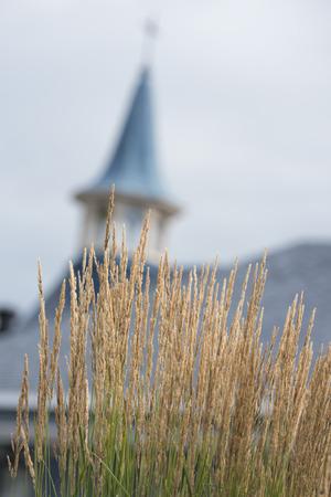 tadoussac old wood blue tower church photo