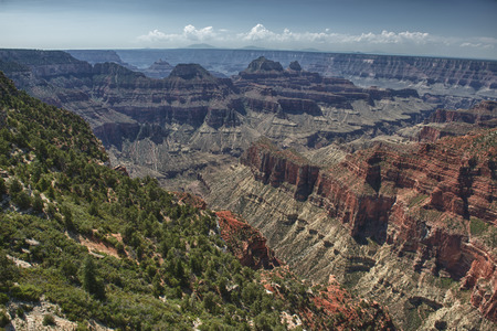 Grand Canyon view panorama from north rim photo