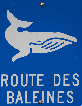 french way: whale way sign in french Stock Photo