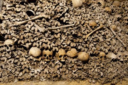 human bones: París Catacumbas Cráneos y huesos