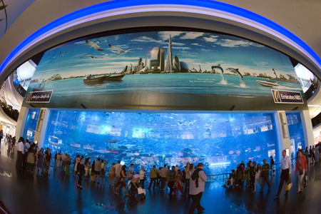 mall of the emirates: people taking pictures at dubai aquarium