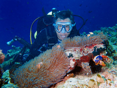anthia: male diver underwater after anemone clown fish Stock Photo