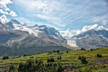 icefield: Canada Icefield Park glacier landscape panorama