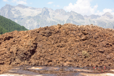 cow dung mountain on the grass Stock Photo