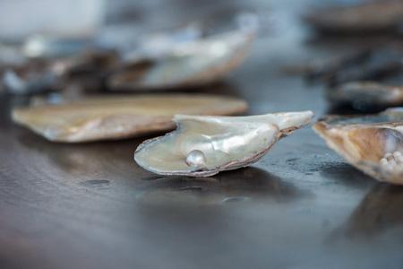 바다에 양식 진주 공장