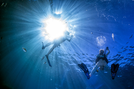 scuba diver in fish and corals reef blue ocean background Imagens - 48420104
