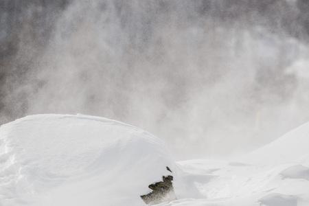 tempest: snow tempest on white mountains Stock Photo