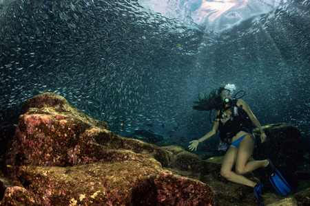 bait ball: Black hair young and pretty mexican latina Scuba diver while going Inside a giant sardines school of fish bait ball in the reef and blue sea