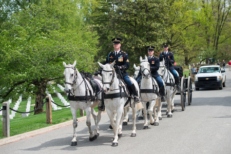 hearse: WASHINGTON D.C., USA - MAY, 2 2014 - US Army marine funeral at Arlington cemetery: coffin on the horse coach Editorial