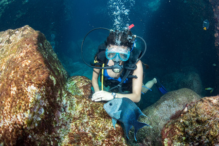 deep water: black hair mexican beauty diving in the deep blue sea Stock Photo