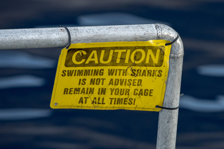 caution swiimming with sharks is not advised remain in your cage at all time yellow warning sign Фото со стока