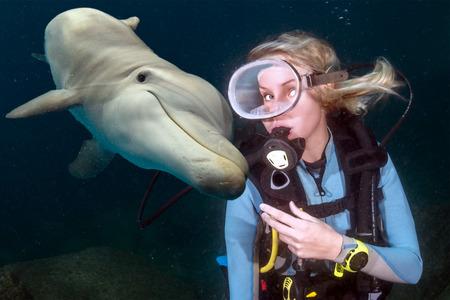vriendelijke dolfijn onderwater op rif achtergrond op zoek naar jou