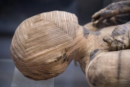 mummified: Egyptian mummy close up detail
