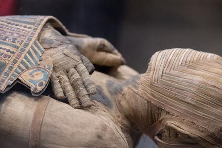 mortuary: Egyptian mummy close up detail