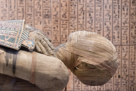 Egyptian mummy close up detail with hieroglyphs background Stockfoto