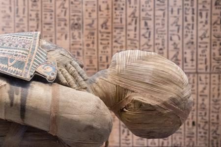 Egyptian mummy close up detail with hieroglyphs background Stockfoto