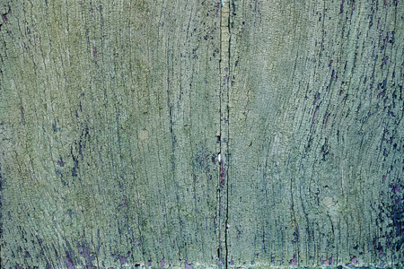 painted wood: Old green painted wood door Stock Photo