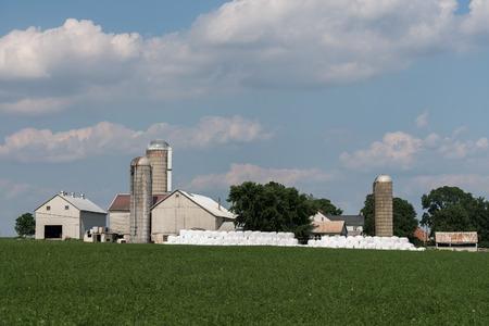 storage bin: grain wheat metallic silo on cloudy sky background with farm